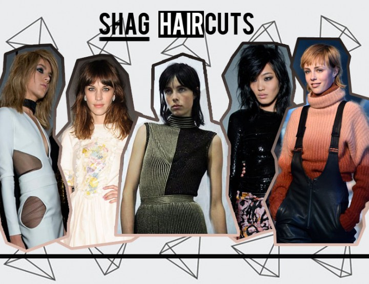 SHAG: HAIR CUT STYLE
